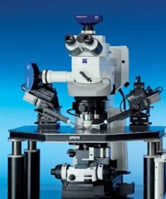 FS Mikroskop
